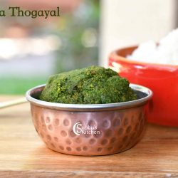 Pudina Thogayal | Mint Thogayal Recipe