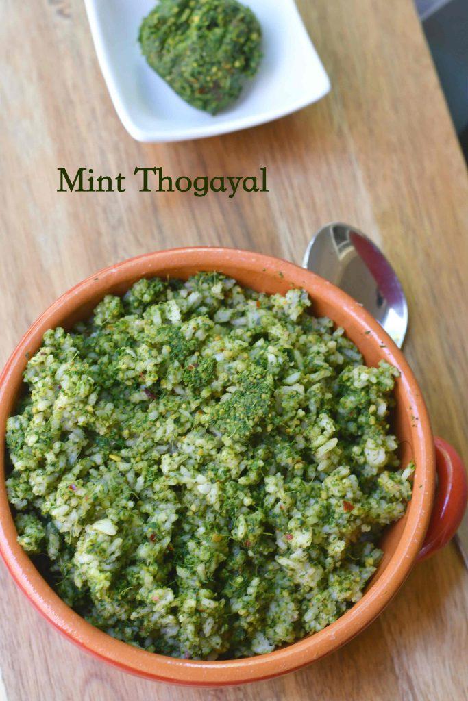 Pudina Thogayal | Mint Thogayal Recipe